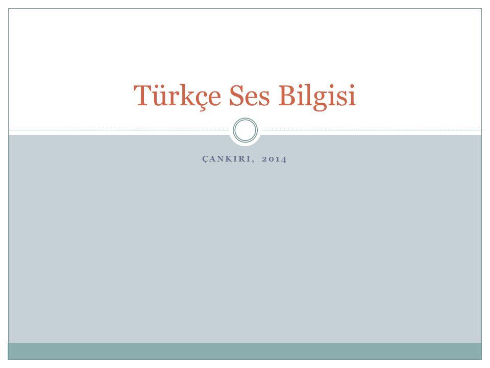 Türkçe Ses Bilgisi ÇANKIRI, 2014