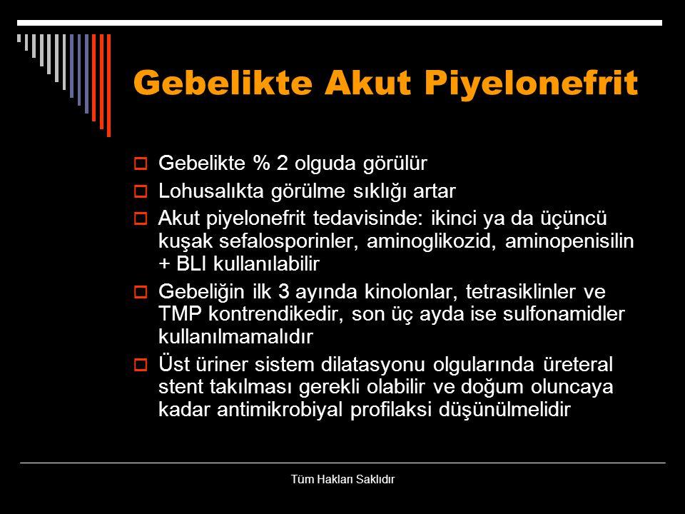 Gebelikte Akut Piyelonefrit