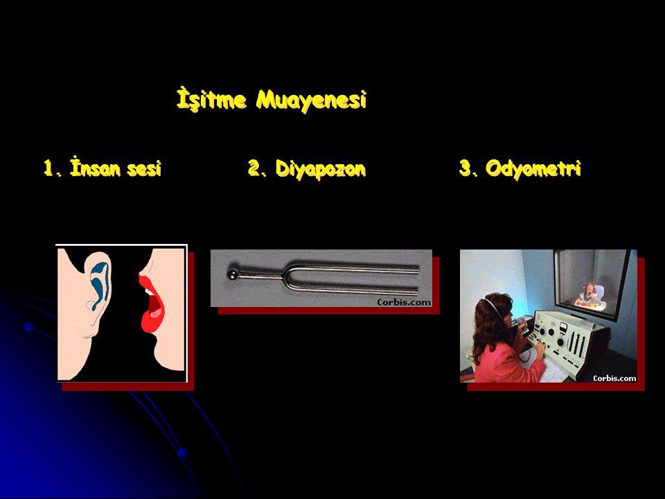 İşitme Muayenesi 1. İnsan sesi 2. Diyapozon 3. Odyometri