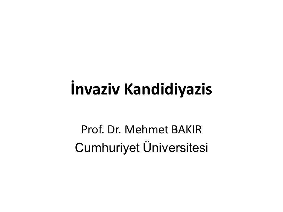 Prof. Dr. Mehmet BAKIR Cumhuriyet Üniversitesi