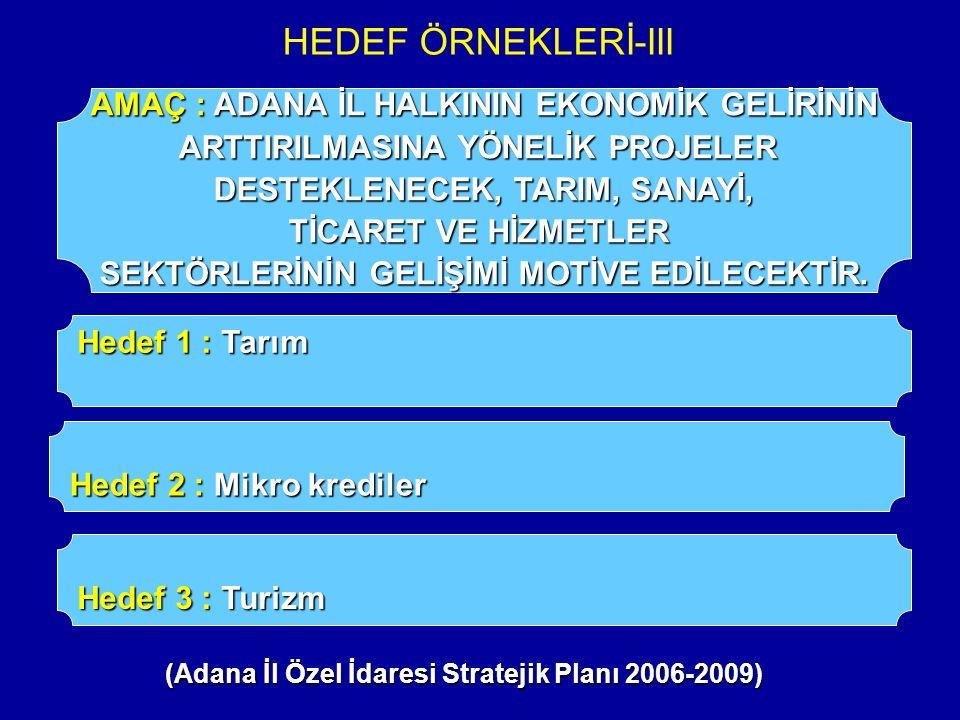 HEDEF ÖRNEKLERİ-III AMAÇ : ADANA İL HALKININ EKONOMİK GELİRİNİN