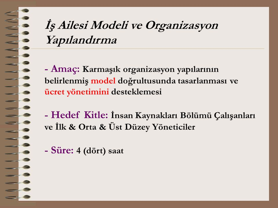 İş Ailesi Modeli ve Organizasyon Yapılandırma