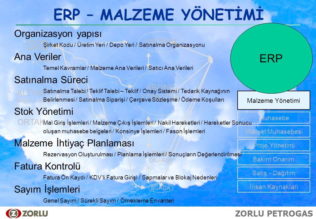 ERP – MALZEME YÖNETİMİ GIS ERP Organizasyon yapısı Ana Veriler