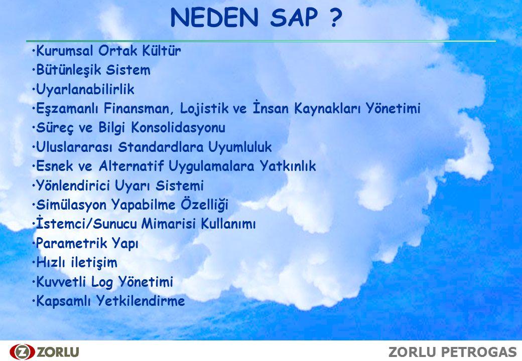NEDEN SAP Kurumsal Ortak Kültür Bütünleşik Sistem Uyarlanabilirlik
