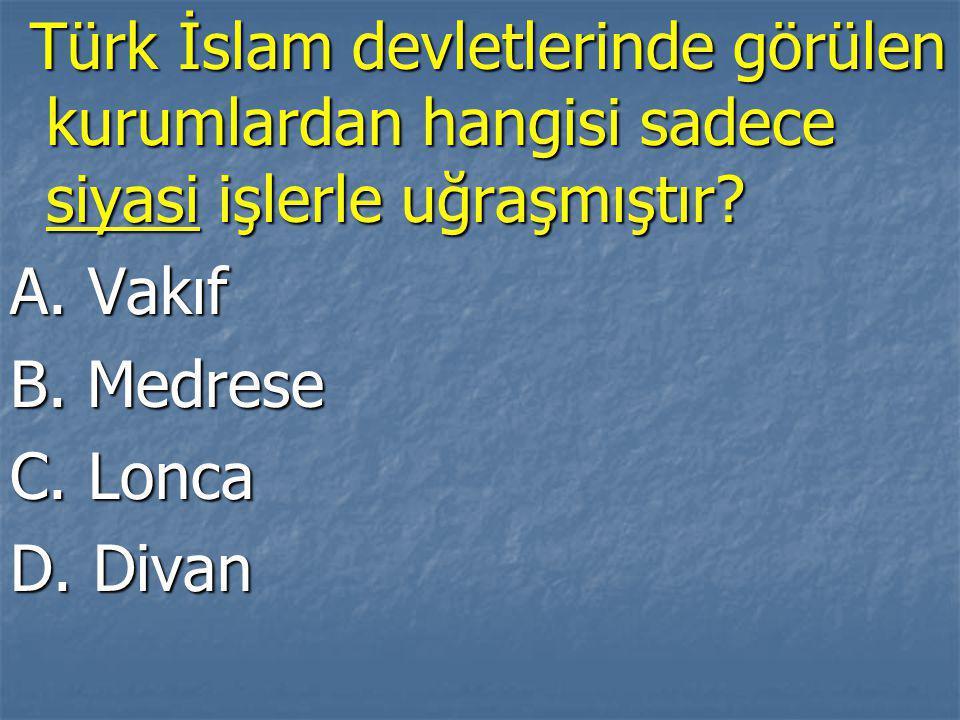 Türk İslam devletlerinde görülen kurumlardan hangisi sadece siyasi işlerle uğraşmıştır