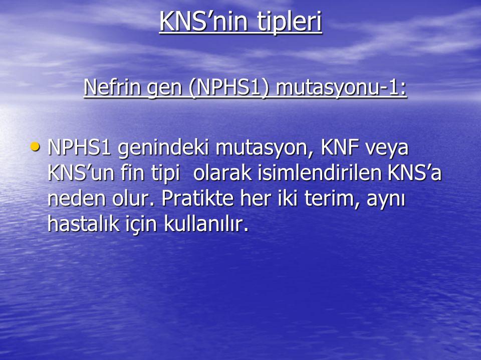 KNS'nin tipleri Nefrin gen (NPHS1) mutasyonu-1: