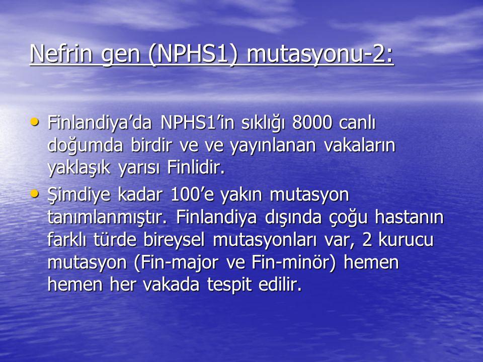 Nefrin gen (NPHS1) mutasyonu-2: