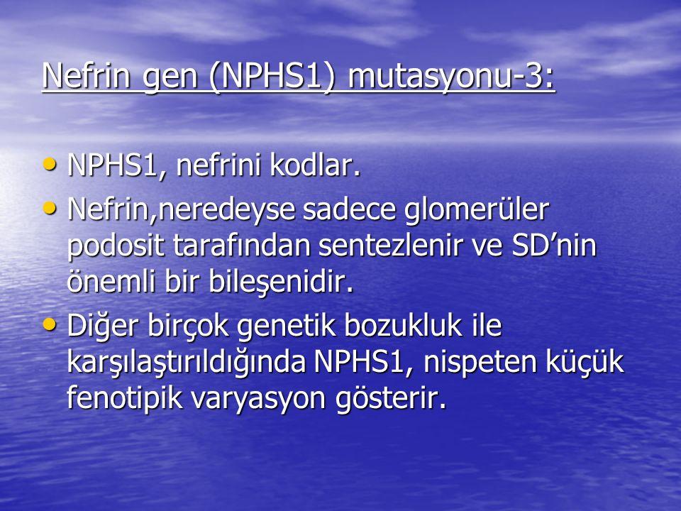 Nefrin gen (NPHS1) mutasyonu-3: