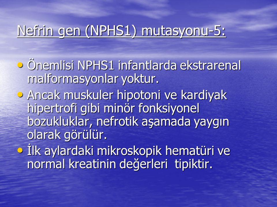 Nefrin gen (NPHS1) mutasyonu-5:
