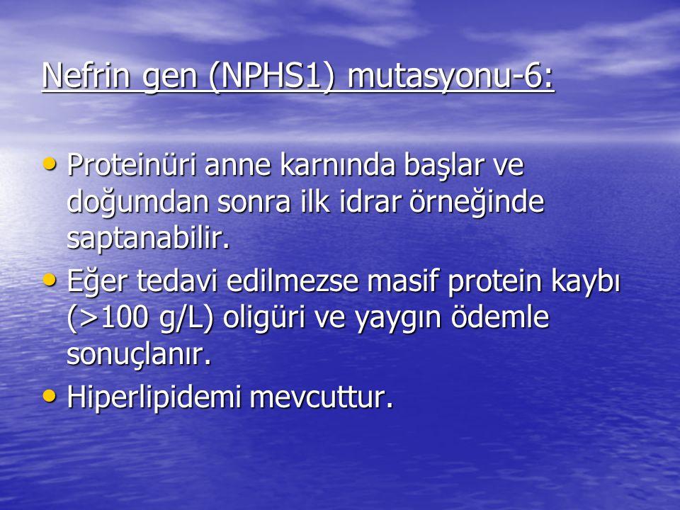 Nefrin gen (NPHS1) mutasyonu-6: