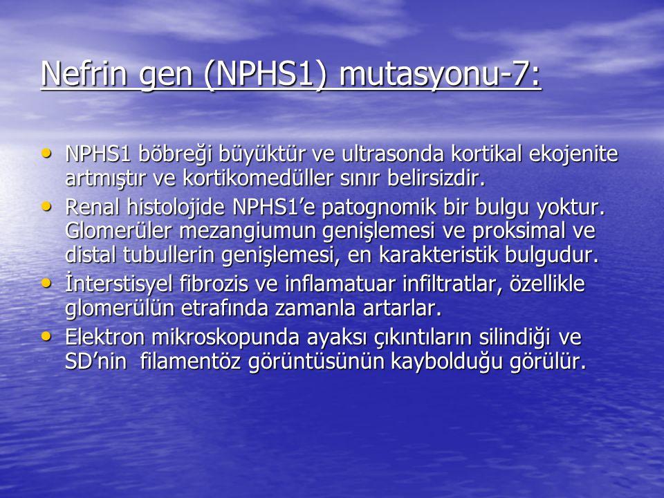 Nefrin gen (NPHS1) mutasyonu-7:
