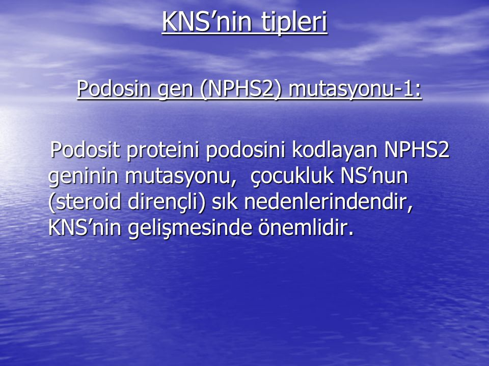 KNS'nin tipleri Podosin gen (NPHS2) mutasyonu-1:
