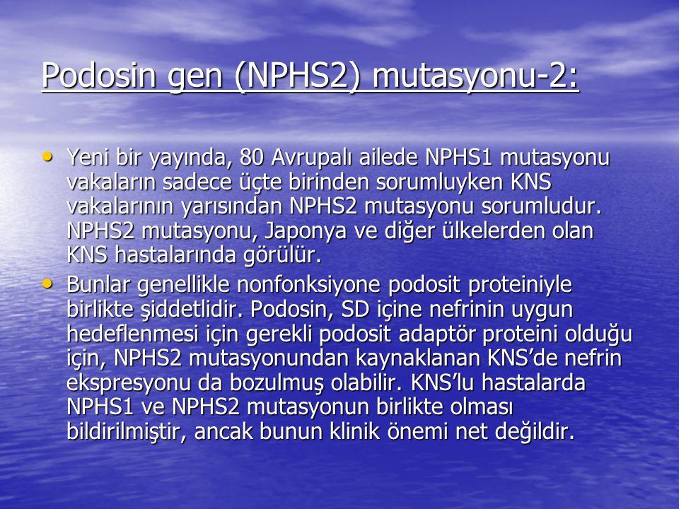 Podosin gen (NPHS2) mutasyonu-2:
