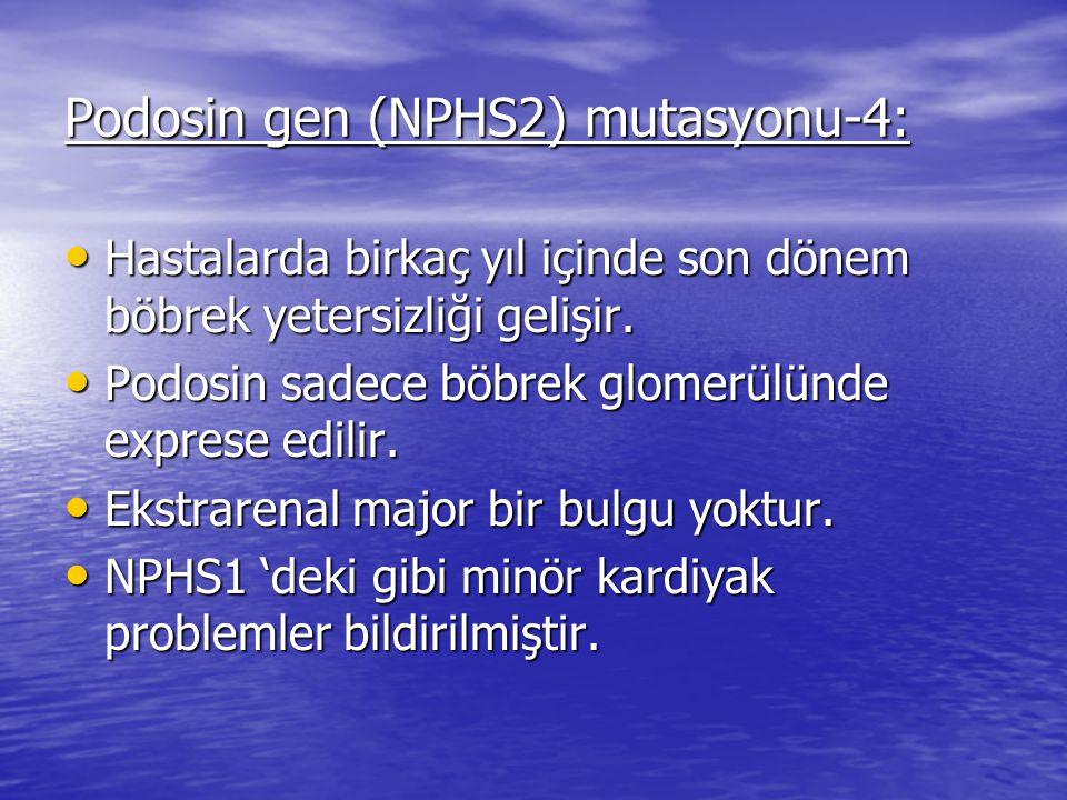Podosin gen (NPHS2) mutasyonu-4: