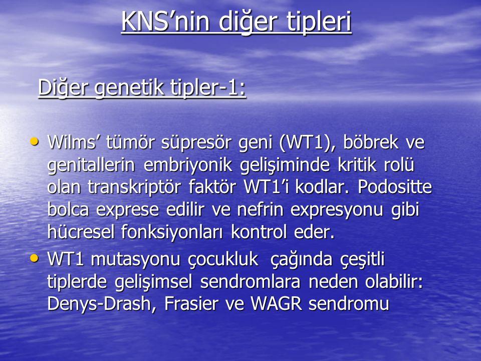 KNS'nin diğer tipleri Diğer genetik tipler-1: