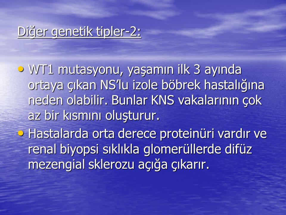 Diğer genetik tipler-2: