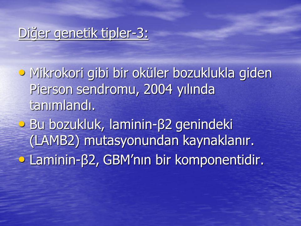 Diğer genetik tipler-3: