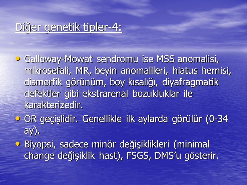 Diğer genetik tipler-4: