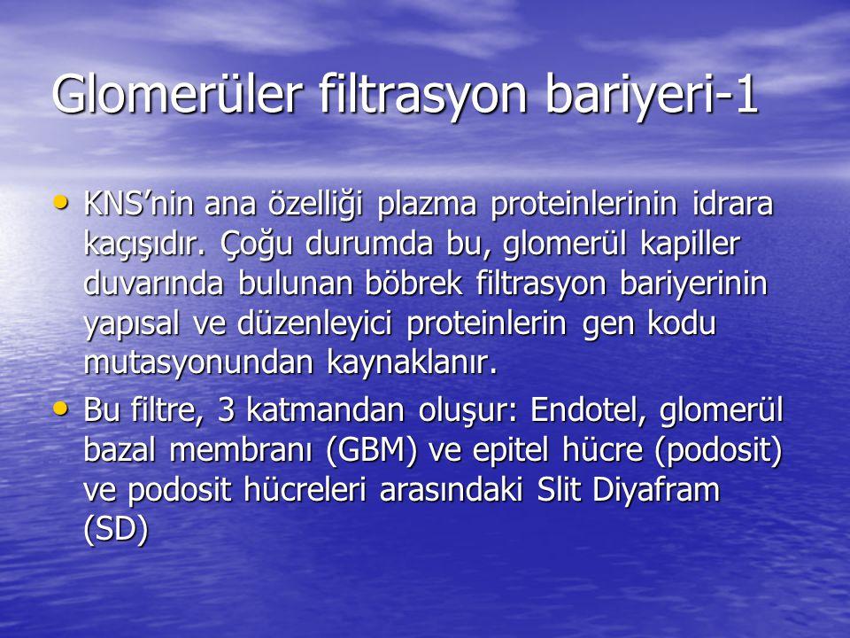 Glomerüler filtrasyon bariyeri-1