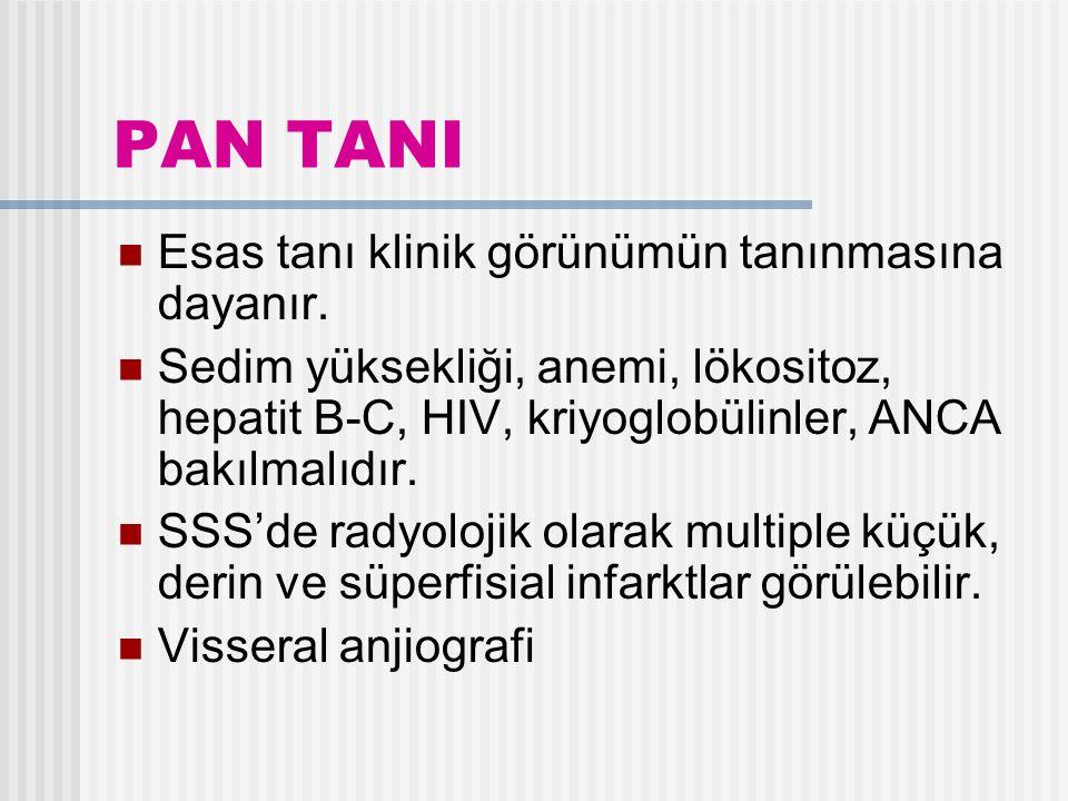 PAN TANI Esas tanı klinik görünümün tanınmasına dayanır.