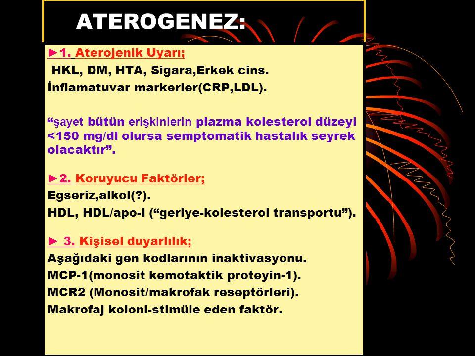ATEROGENEZ: ►1. Aterojenik Uyarı; HKL, DM, HTA, Sigara,Erkek cins.