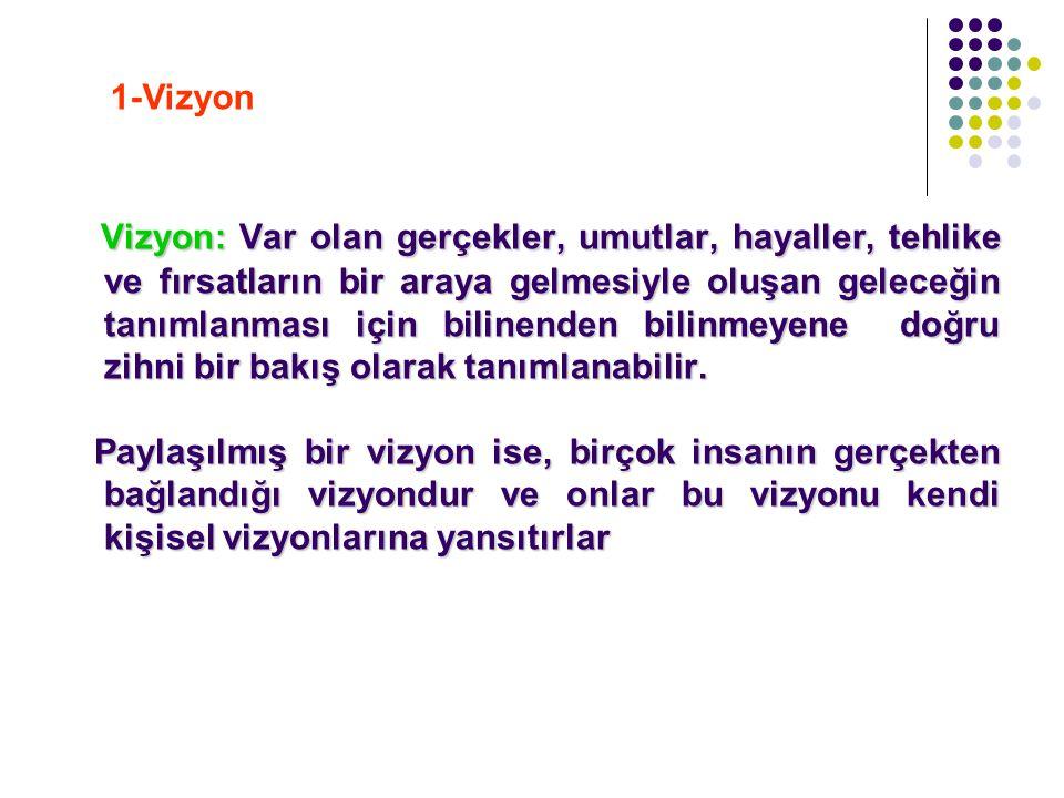 1-Vizyon