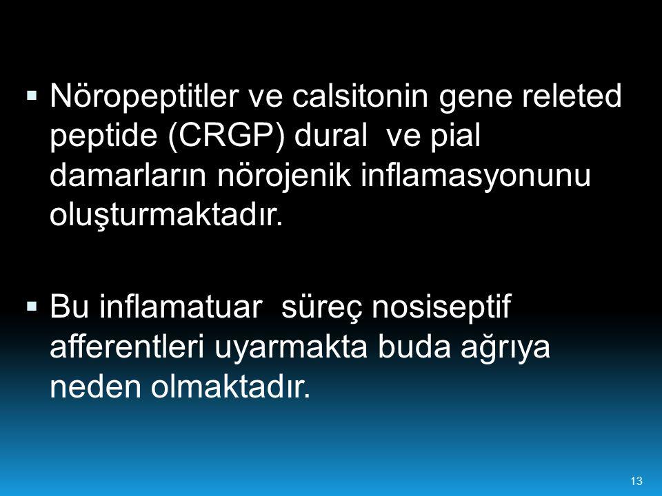 Nöropeptitler ve calsitonin gene releted peptide (CRGP) dural ve pial damarların nörojenik inflamasyonunu oluşturmaktadır.
