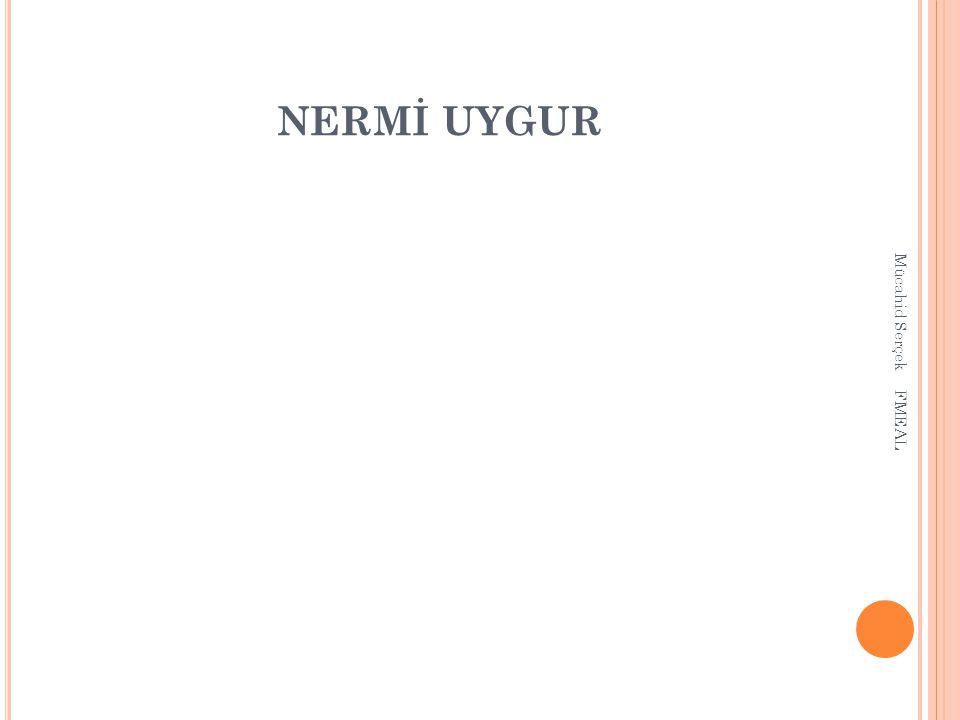 NERMİ UYGUR Mücahid Serçek FMEAL