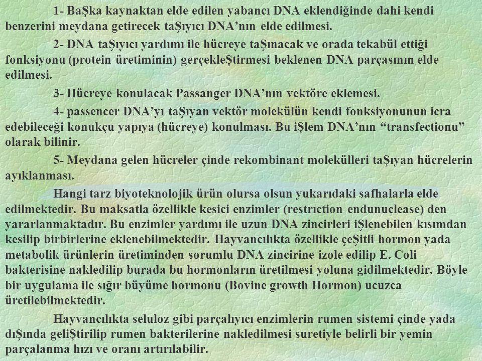 1- BaŞka kaynaktan elde edilen yabancı DNA eklendiğinde dahi kendi benzerini meydana getirecek taŞıyıcı DNA'nın elde edilmesi.
