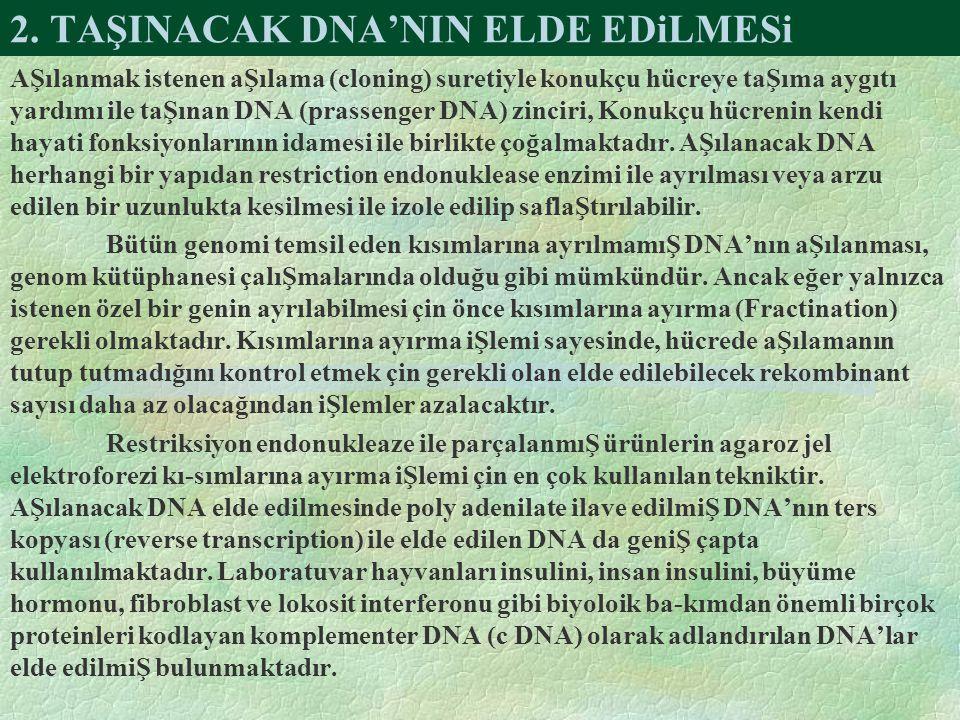 2. TAŞINACAK DNA'NIN ELDE EDiLMESi