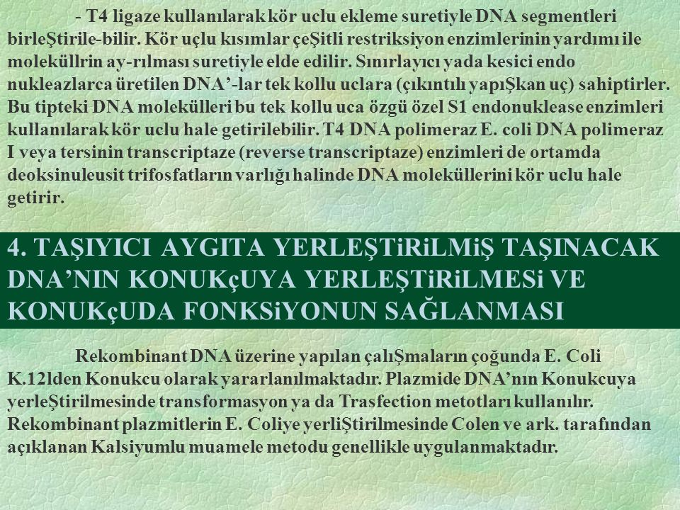 - T4 ligaze kullanılarak kör uclu ekleme suretiyle DNA segmentleri birleŞtirile-bilir. Kör uçlu kısımlar çeŞitli restriksiyon enzimlerinin yardımı ile moleküllrin ay-rılması suretiyle elde edilir. Sınırlayıcı yada kesici endo nukleazlarca üretilen DNA'-lar tek kollu uclara (çıkıntılı yapıŞkan uç) sahiptirler. Bu tipteki DNA molekülleri bu tek kollu uca özgü özel S1 endonuklease enzimleri kullanılarak kör uclu hale getirilebilir. T4 DNA polimeraz E. coli DNA polimeraz I veya tersinin transcriptaze (reverse transcriptaze) enzimleri de ortamda deoksinuleusit trifosfatların varlığı halinde DNA moleküllerini kör uclu hale getirir.