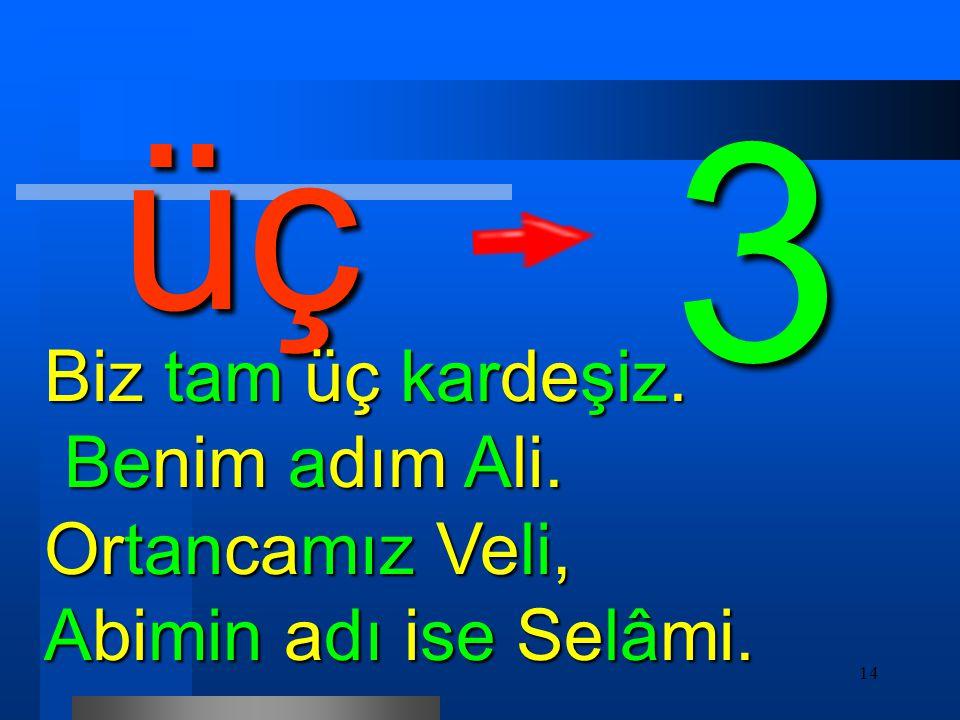 üç 3 Biz tam üç kardeşiz. Benim adım Ali. Ortancamız Veli, Abimin adı ise Selâmi.