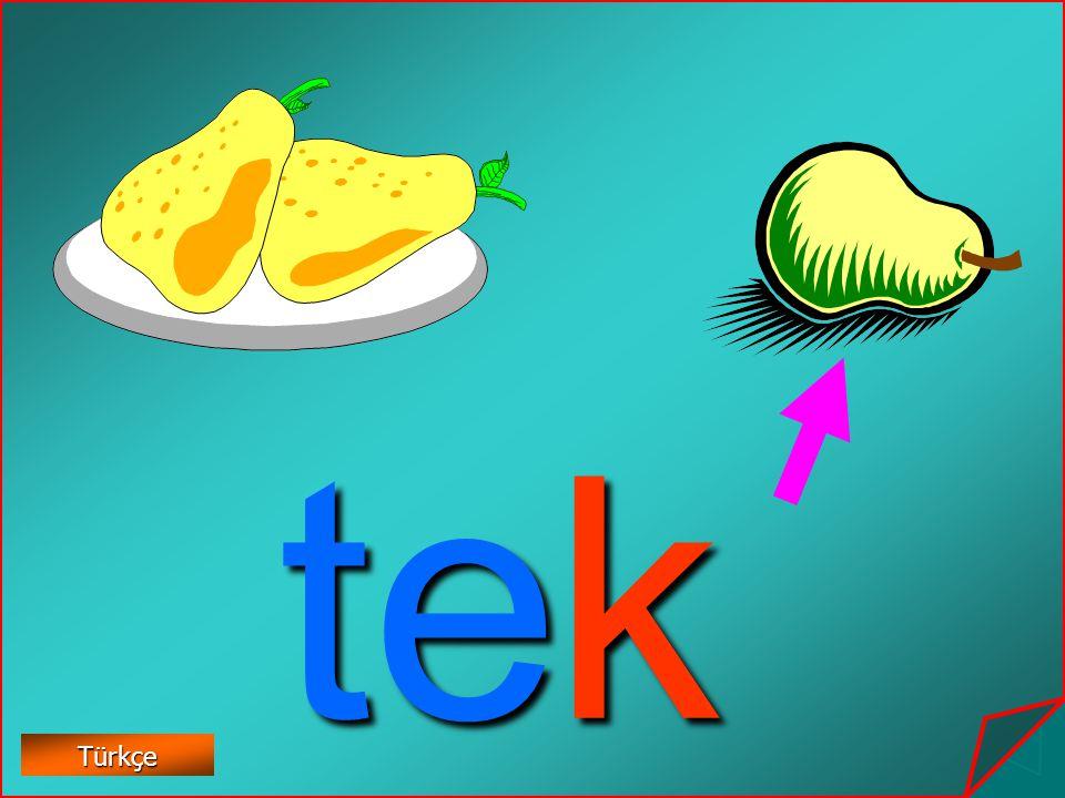 te k Türkçe