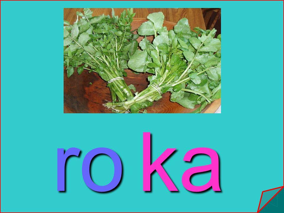 ro ka