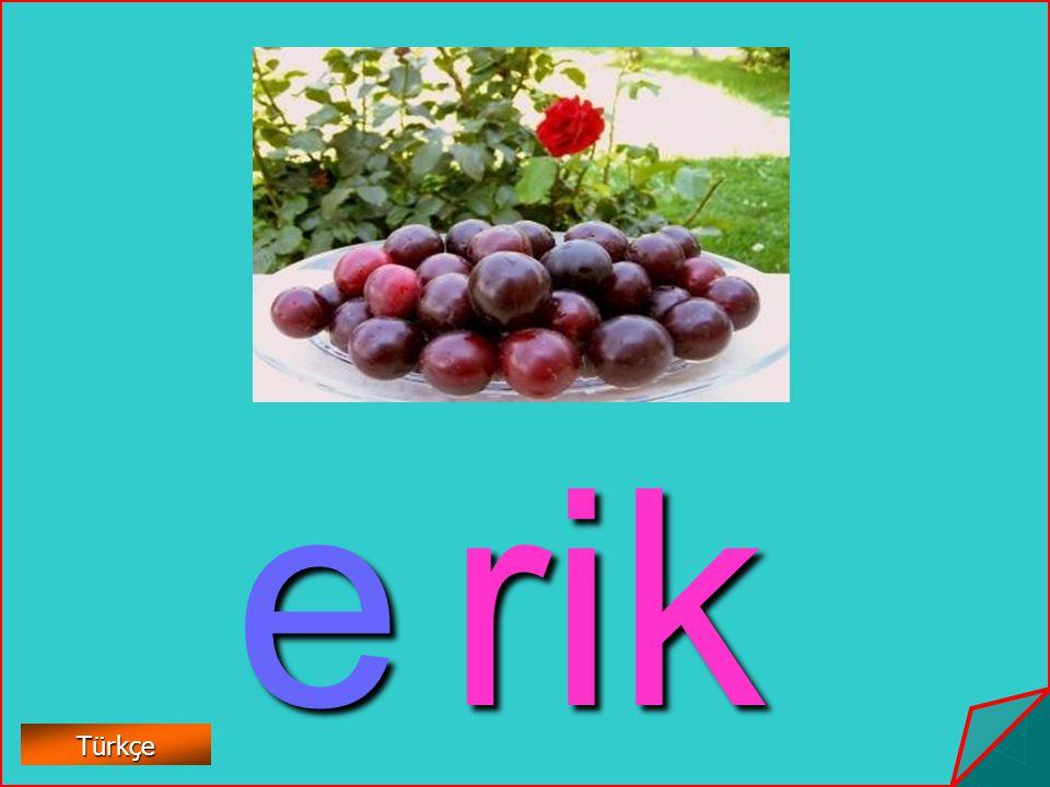 e rik Türkçe