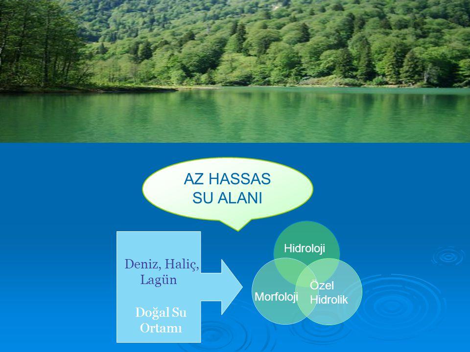 AZ HASSAS SU ALANI Lagün Doğal Su Ortamı Hidroloji Deniz, Haliç,