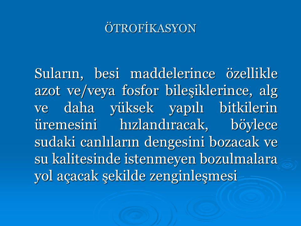 ÖTROFİKASYON