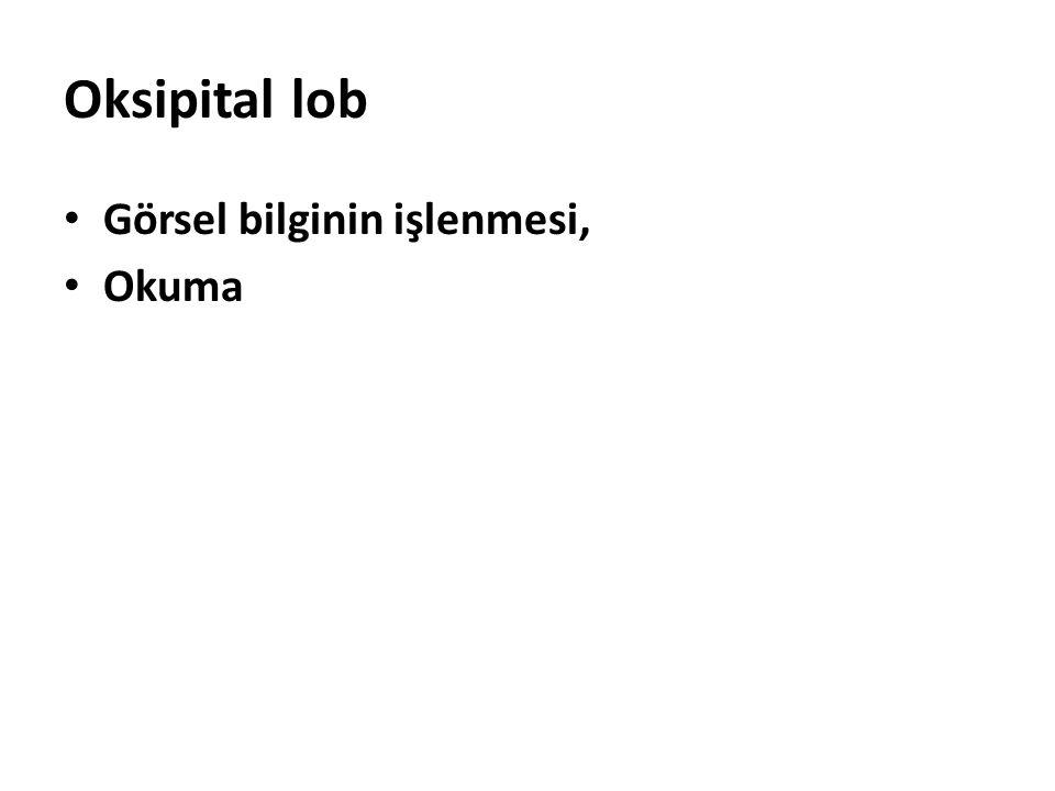 Oksipital lob Görsel bilginin işlenmesi, Okuma