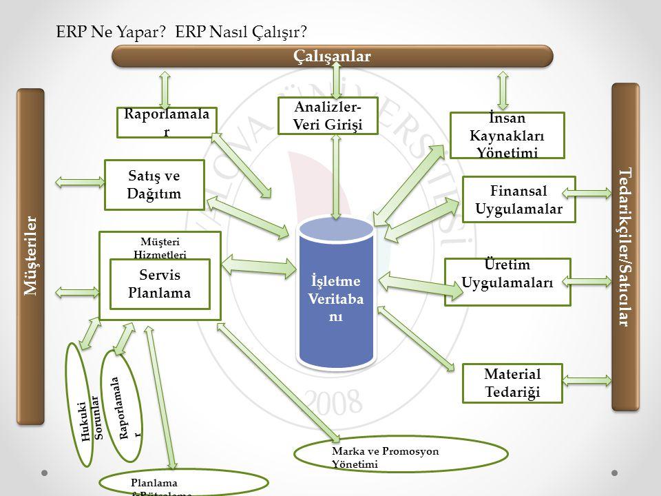 Analizler-Veri Girişi İnsan Kaynakları Yönetimi Tedarikçiler/Satıcılar