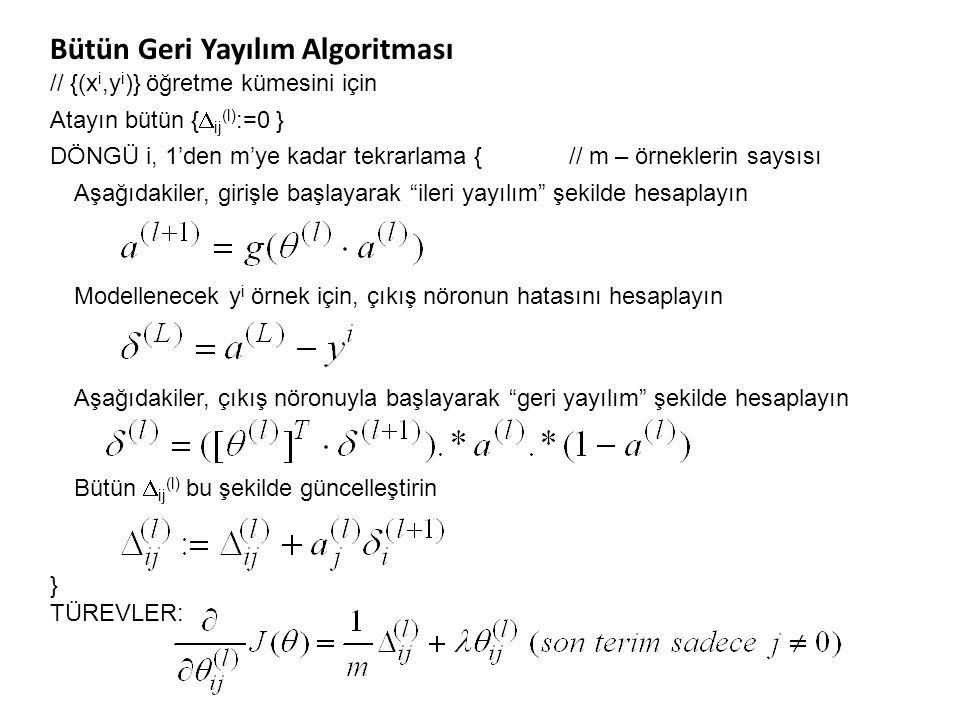 Bütün Geri Yayılım Algoritması