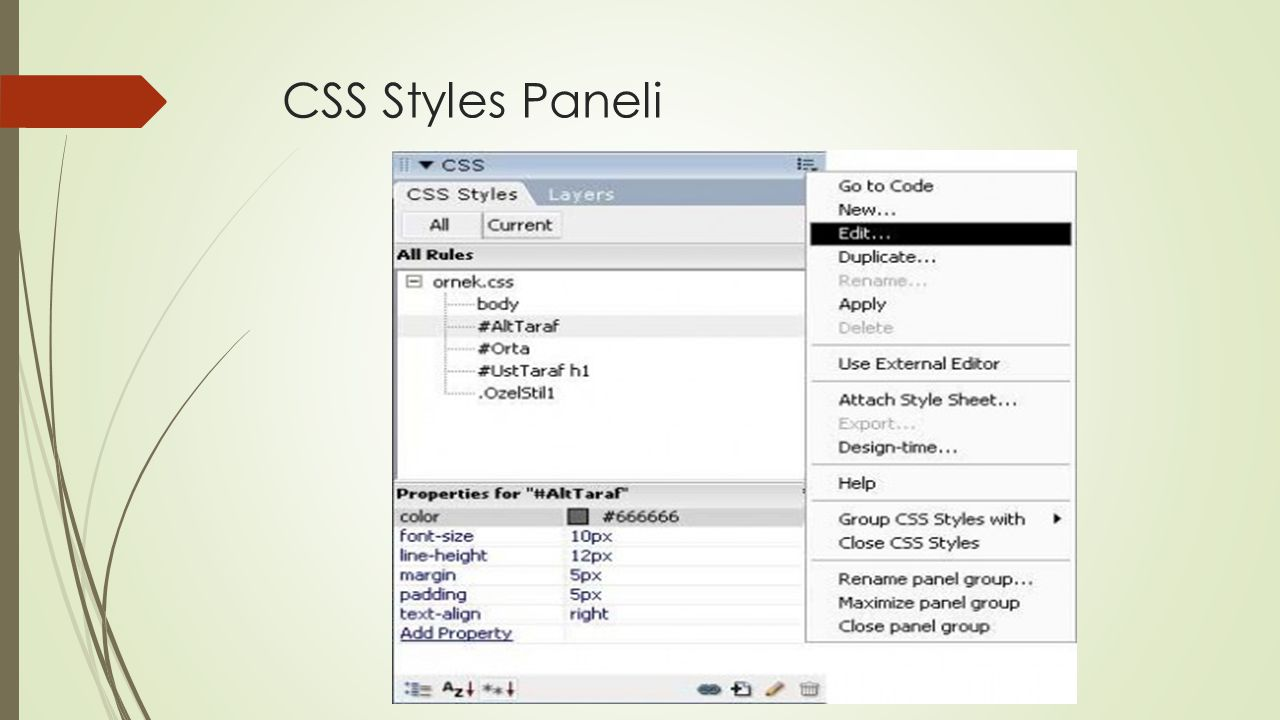 CSS Styles Paneli