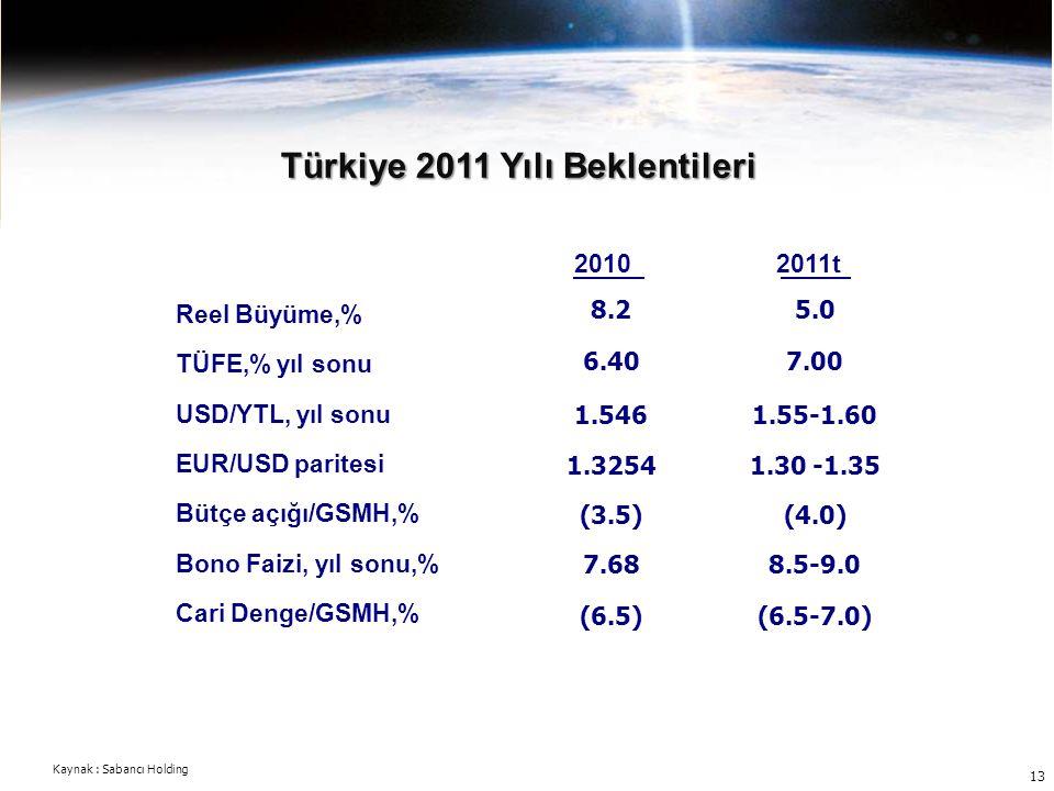 Türkiye 2011 Yılı Beklentileri
