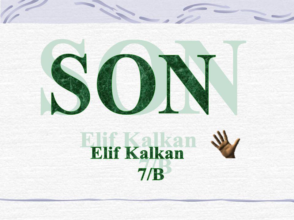 SON Elif Kalkan 7/B