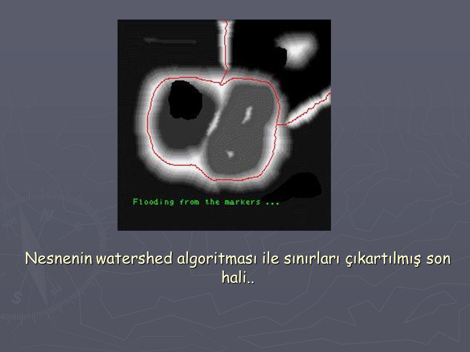 Nesnenin watershed algoritması ile sınırları çıkartılmış son hali..