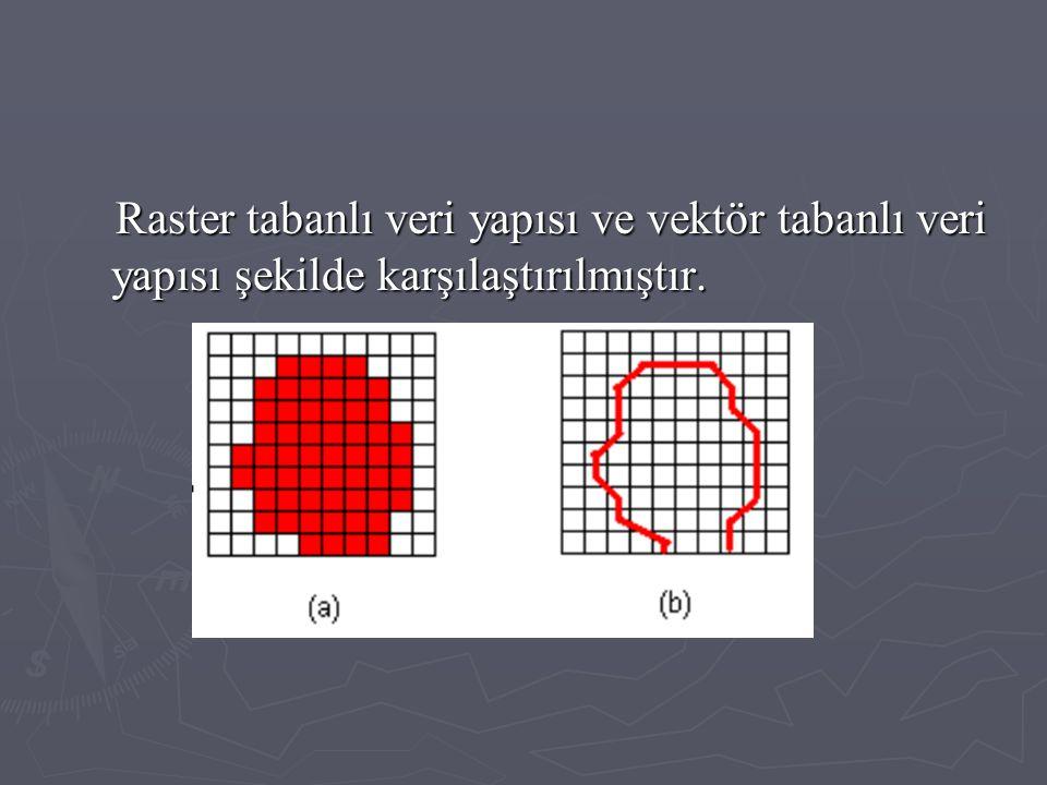 Raster tabanlı veri yapısı ve vektör tabanlı veri yapısı şekilde karşılaştırılmıştır.
