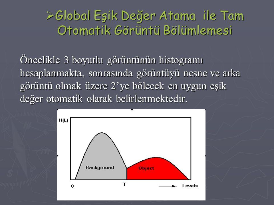 Global Eşik Değer Atama ile Tam Otomatik Görüntü Bölümlemesi