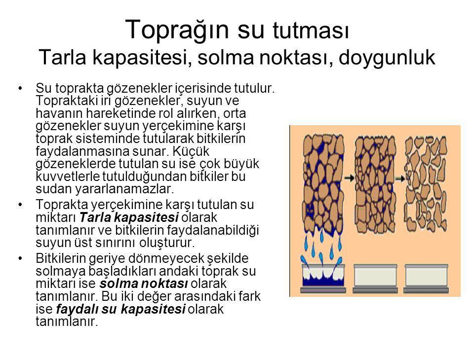 Toprağın su tutması Tarla kapasitesi, solma noktası, doygunluk