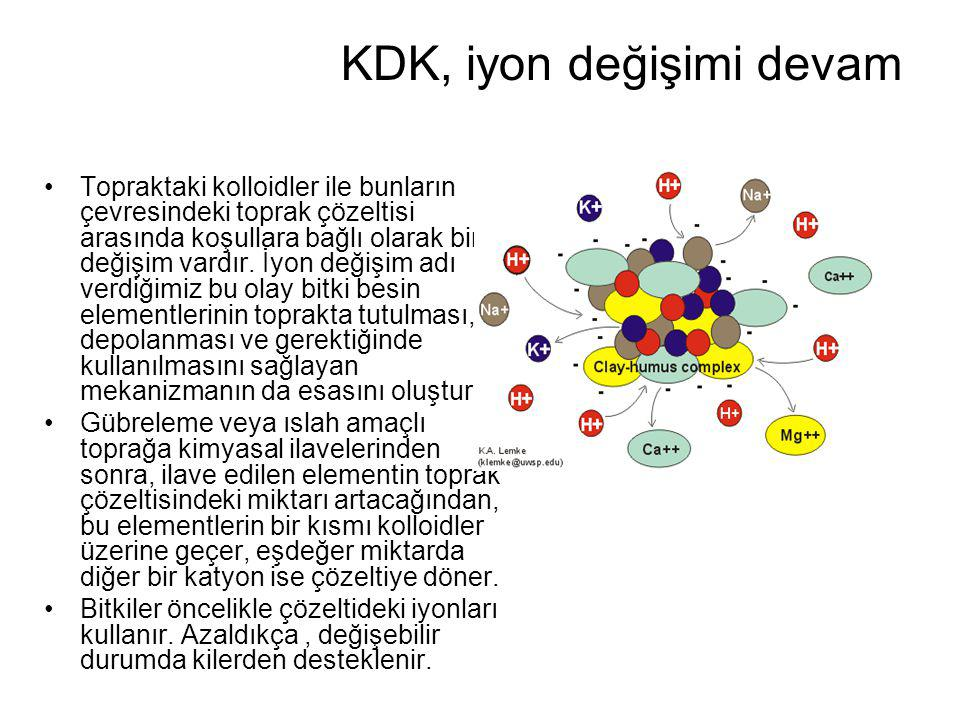 KDK, iyon değişimi devam