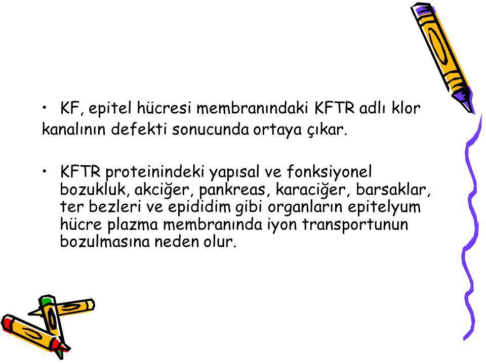KF, epitel hücresi membranındaki KFTR adlı klor