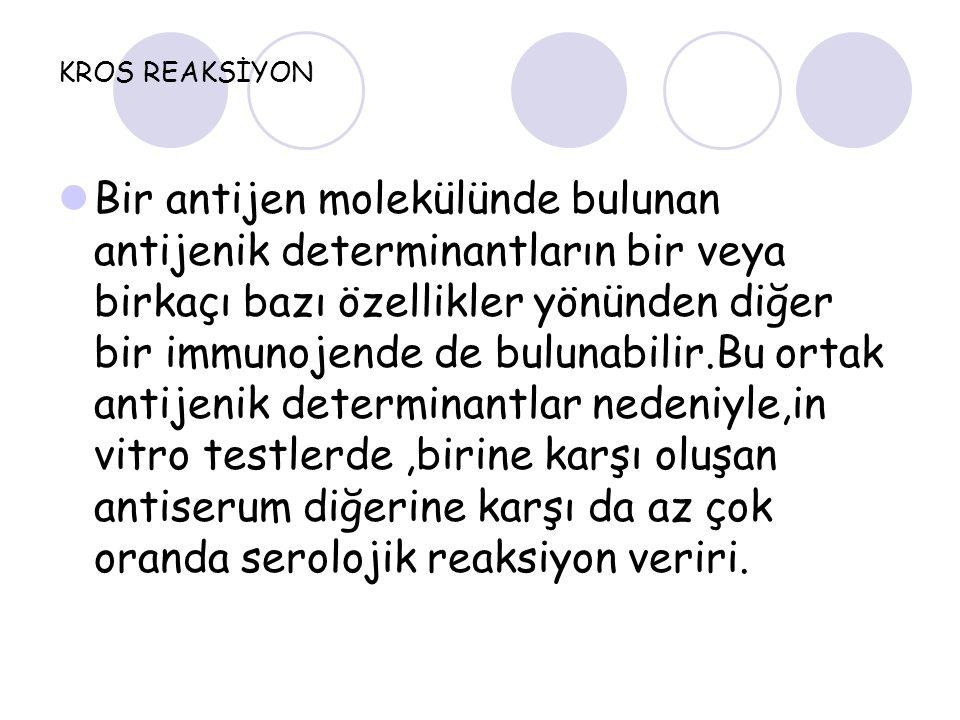 KROS REAKSİYON